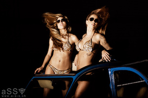 Steffi & Lucie wear Serial Bikini (Brown/Plush Cheetah)